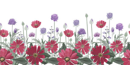Vector floral seamless border. Summer flowers, herbs, leaves. Gaillardia, marigold, oxeye daisy, rosemary, lavender, sage, allium. Red, purple flowers isolated on a white background.