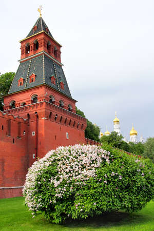 unnamed: The First Unnamed Tower of Moscow Kremlin in Russia