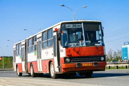 convey: YEKATERINBURG, RUSSIA - MAY 9, 2010: Articulated city bus Ikarus 280 at the suburban road. Editorial
