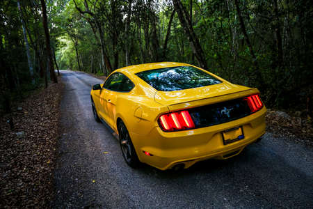 CALAKMUL, MEXICO - MAY 19, 2017: Yellow muscle car Ford Mustang at the countryside.