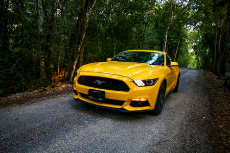 calakmul: CALAKMUL, MEXICO - MAY 19, 2017: Yellow muscle car Ford Mustang at the countryside.