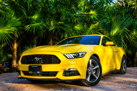 QUINTANA ROO, MEXICO - MAY 16, 2017: Yellow sportcar Ford Mustang at the countryside.