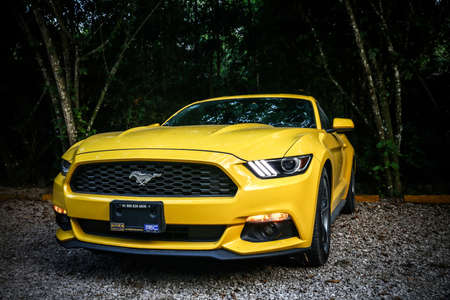 Palenque, Mexico - May 23, 2017: Yellow muscle car Ford Mustang in the dark deep forest.
