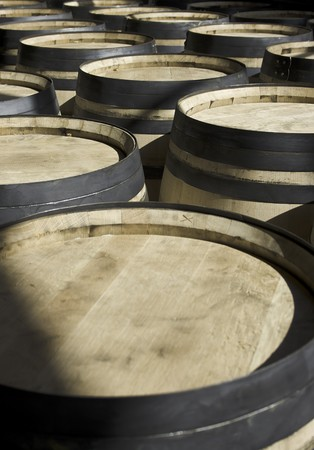 macerated: wine new barrels stored in rows