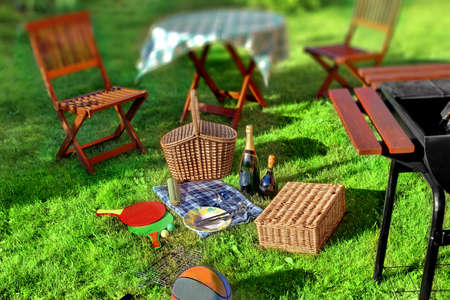 lawn party: Summer BBQ Party or Picnic scene in backyard on lawn.