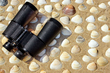 Vintage Binoculars, Compass and Seashells on a Beach Sand close-up  Summer Marine background with space for text or image photo