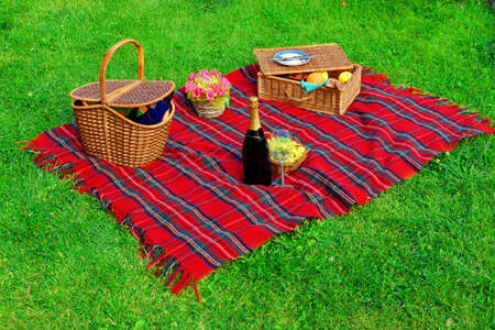 picnic blanket: Manta de picnic, dos cestas con comida y vino, champ�n, uvas y flores en el c�sped