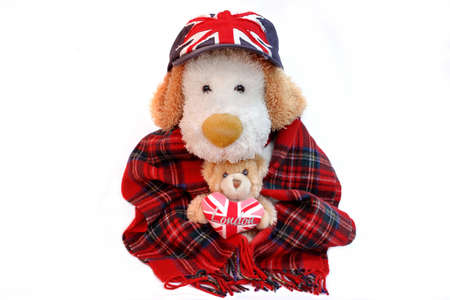 englishman: Old Dog Englishman and teddy bear with London Love Heart  isolated on white. Stock Photo
