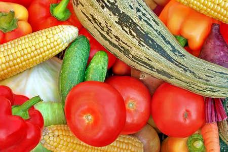 harvest background: Assortment of fresh vegetables close up. Harvest background