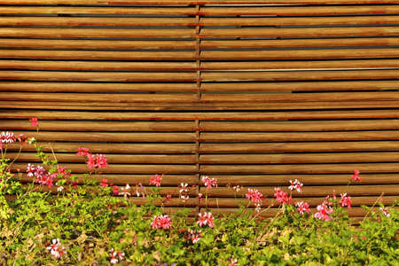 louvered: Wood Fence in the Backyard Background Stock Photo