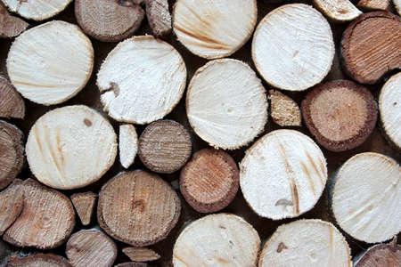 sandalwood: Tree Cross Section Decorative Mosaic Panel. Boxwood, Sandalwood. Stock Photo