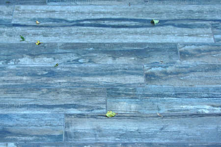 Outdoors Natural Blue Wooden Flooring in Autumn photo