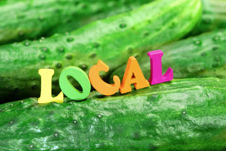 home grown: Wooden Sign Local On Fresh Home Grown Cucumbers Close-up Background
