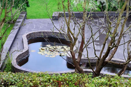 back yard pond: Top View On After Rain Patio With  Artificial Pond And Well Cared Summer Backyard Garden In The Background Stock Photo
