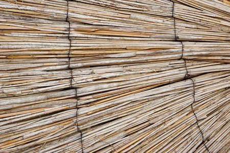 bamboo: Natural Bamboo Curtain Or Sunshade Or Blinds Background Perspective And Texture With Space For Text Or Image