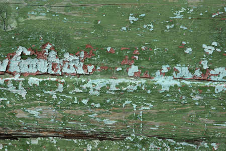 mangy: Shabby Weathered Wood Green Background Texture Abstract Close-up