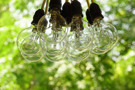 Electric Bulb Garland Hanging In The Summer Backyard Garden,  Blurred Green Background With Bokeh