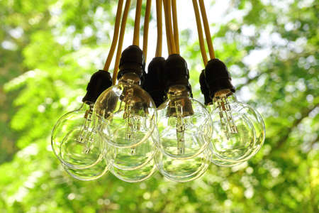 electric bulb: Electric Bulb Garland Hanging In The Summer Backyard Garden,  Blurred Green Background With Bokeh