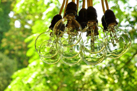 hanging lamp: Big Light Bulb Bundle Hanging In A Garden Before Night Party
