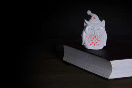 dark backgrounds: White Ceramic Owl Statuette   (Nightlight) With Red Lights And Old Book On The Rough Rustic Wood Table In Dark