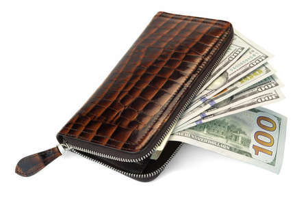 unzip: Unzipped Shinny Long  Wallet Made From Brown Crocodile Leather And American Dollars Cash Isolated On White Background, Top View, High Detail Close Up Stock Photo