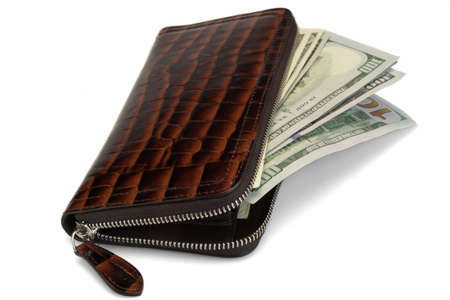 unzipped: Unzipped Shinny Long  Wallet Made From Brown Crocodile Leather And American Dollars Cash Isolated On White Background, Top View, High Detail Close Up Stock Photo