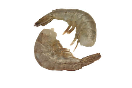king size: Two Raw King Size Shrimps (Penaeidae Shrimps) Laying Together Isolated On White Background, Top View, Close Up