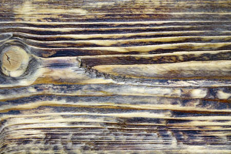 annealed: Burned Wooden Board Surface After Heat And Flame Treatment. Textured Natural Wood Structure For Home Interior Design In Vintage Modern Style. Background Or Texture With Copy Space.