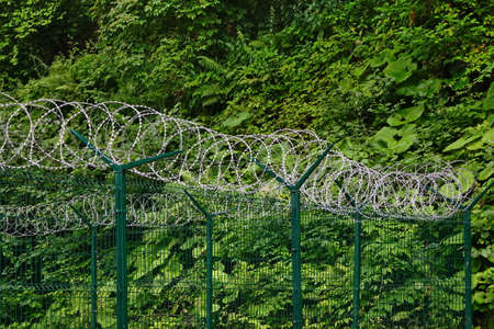 fencing wire: Wire Sectional Fence Panel With PVC Coated And Barb Razor Wire With Central Reinforcement.  Secur Perimeter Fencing At Privacy Area Stock Photo