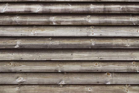 barnwood: Close Up Of Unpainted Natural Weathered Textured Rustic Barnwood Panel.  Traditional Scandinavian Pine Wood Planks Siding. Woodgrain Textured  Background With Copy Space