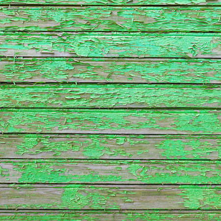 Green Barn Wooden Wall Planking Square Texture. Old Solid Wood Slats Rustic Shabby Frame Background. Paint Peeled Grungy Weathered Isolated Surface. Faded Natural Wood Board Panel Structure Reklamní fotografie