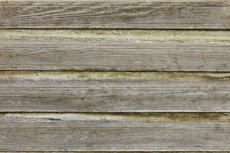 Dark Grey Barn Wooden Wall Plank Texture. Old Solid Wood Slats Rustic Shabby Gray Background. Hardwood Dark Weathered Timber Boards Surface. Grunge Faded Wood Panel Structure, Close Up Reklamní fotografie