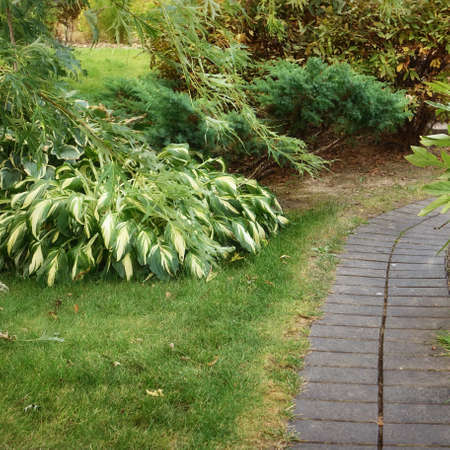 Backyard Garden Modern Design Landscaping. Landscaped Decorative Garden Winding Pathway Or Walkway From Black Bricks. Back Yard Lawn With Curved Brick Paving Path To Country House.