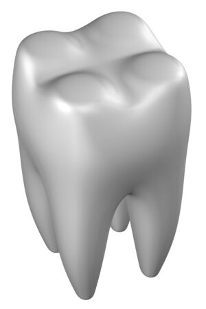 periodontal: Human tooth, isolated on white background. 3D rendering. Stock Photo