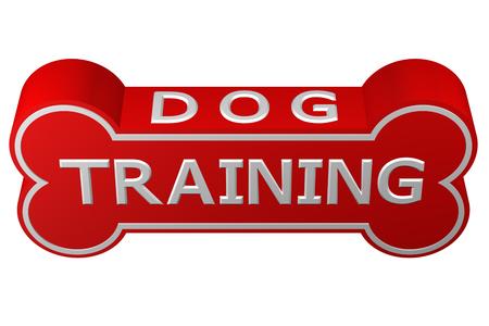 sentarse: Concepto: el entrenamiento del perro. hueso de perro con las palabras - el entrenamiento del perro, aisladas sobre fondo blanco.. representación 3D.