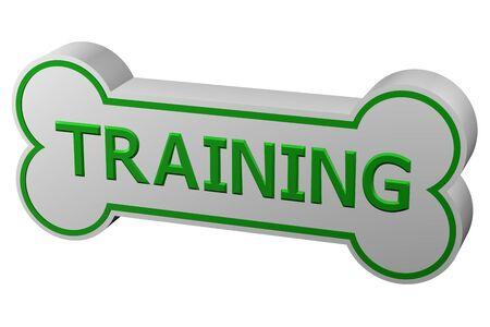dog training: Concept: dog training. Dog bone with words - training., isolated on white background. 3D rendering.