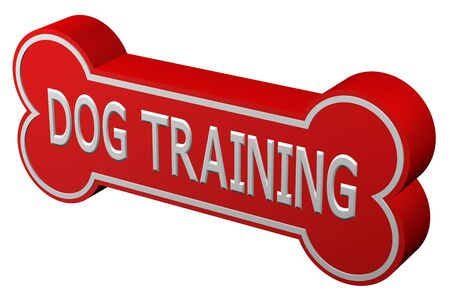conditioned: Concept: dog training. Dog bone with words - dog training., isolated on white background. 3D rendering. Stock Photo