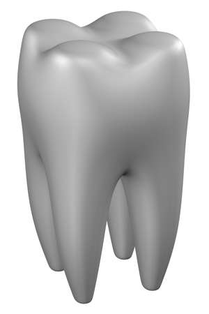 periodontal disease: Human tooth, isolated on white background. 3D rendering. Stock Photo