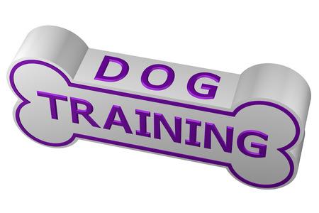 dog training: Concept: dog training. Dog bone with words - dog training., isolated on white background. 3D rendering. Stock Photo