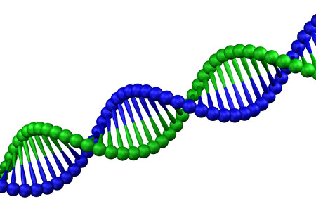 DNA molecule, isolated on white background. 3D rendering. Stock Photo