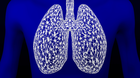 Concept: lungs as grid on the human body. 3D rendering.