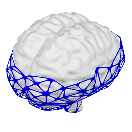 Internet addiction disorder. Human brain in the net, isolated on white background. 3D rendering.