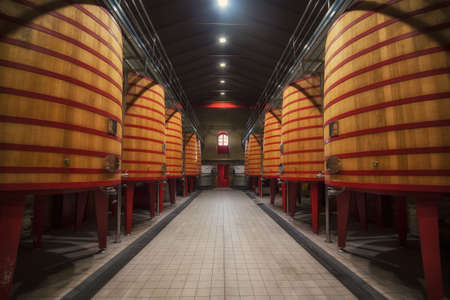 Big Barrels row in a Rioja winery in Alava