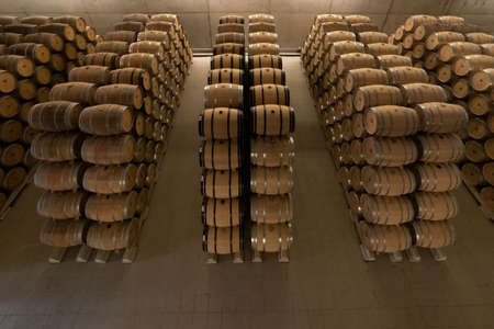 Barrels in a row in a Rioja Alavesa winery, Baigorri