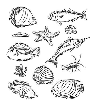 Hand drawn of aquatic animals  イラスト・ベクター素材