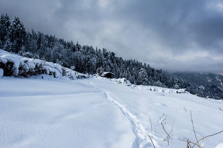 Frozen days Stock Photo