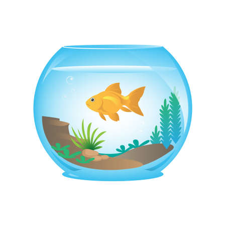 gold fish bowl: Goldfish in a fishbowl and plants Illustration