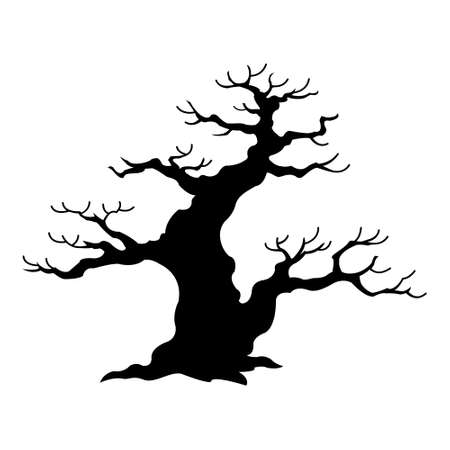Old bare tree silhouette