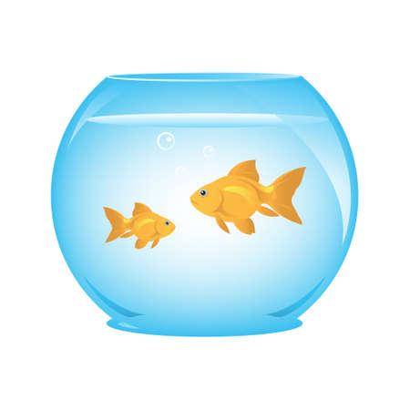 gold fish bowl: Goldfish in Bowl Illustration