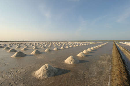Salt fields with piled up sea salt in Thailand photo